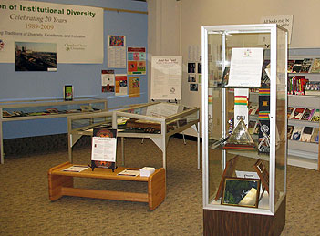 A view of the diversity display