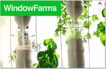 Window Farms graphic