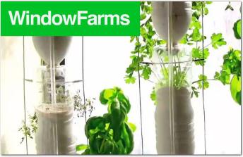 Window Farms graphic