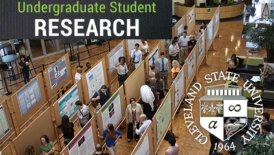Undergraduate Student Research at CSU
