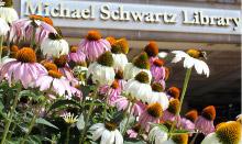 Michael Schwartz Library