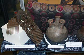 At Home in Africa display at the Library