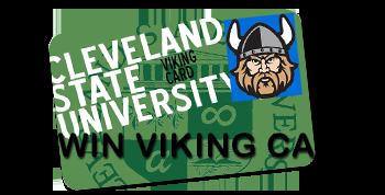 Win Viking Cash
