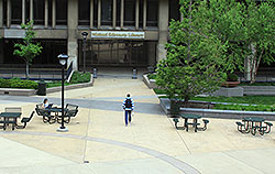 A view of the Library entrance from the plaza